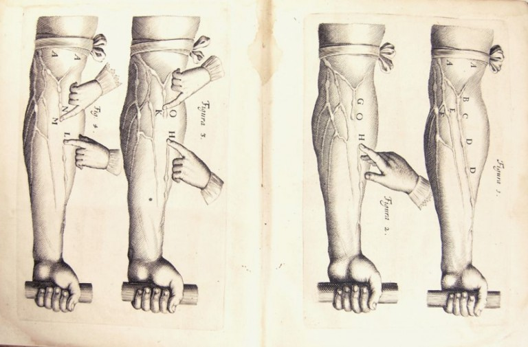 De Motu Cordis & sanguinis in animalibus, anatomica exercitatio. Cum refutationibus Aemylii Parisani, romani, philosophi, ac medici Veniti; et Jacobi Primrosii, in Londinensi collegio doctoris medici. William HARVEY.